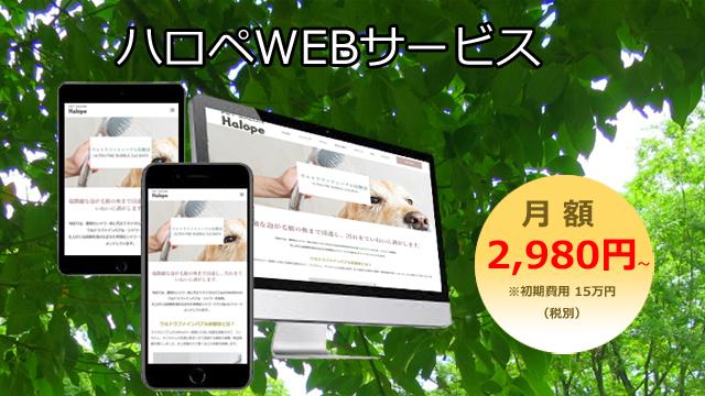 "webservice"""