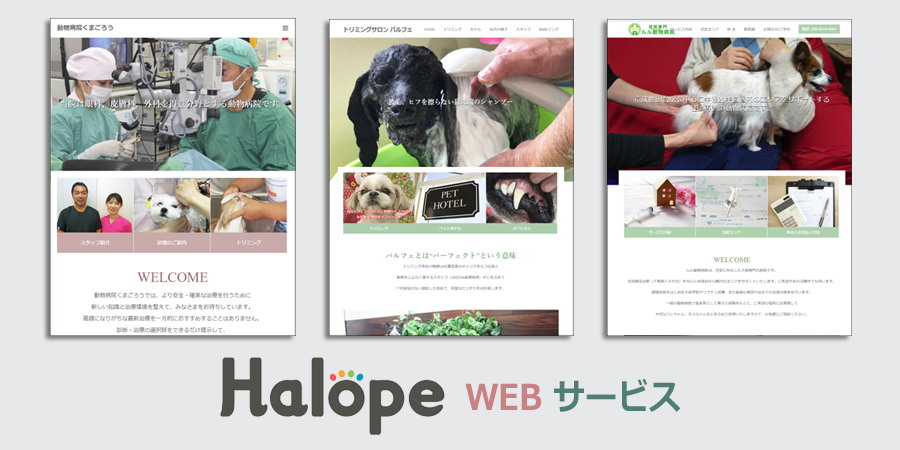 product-halope-log