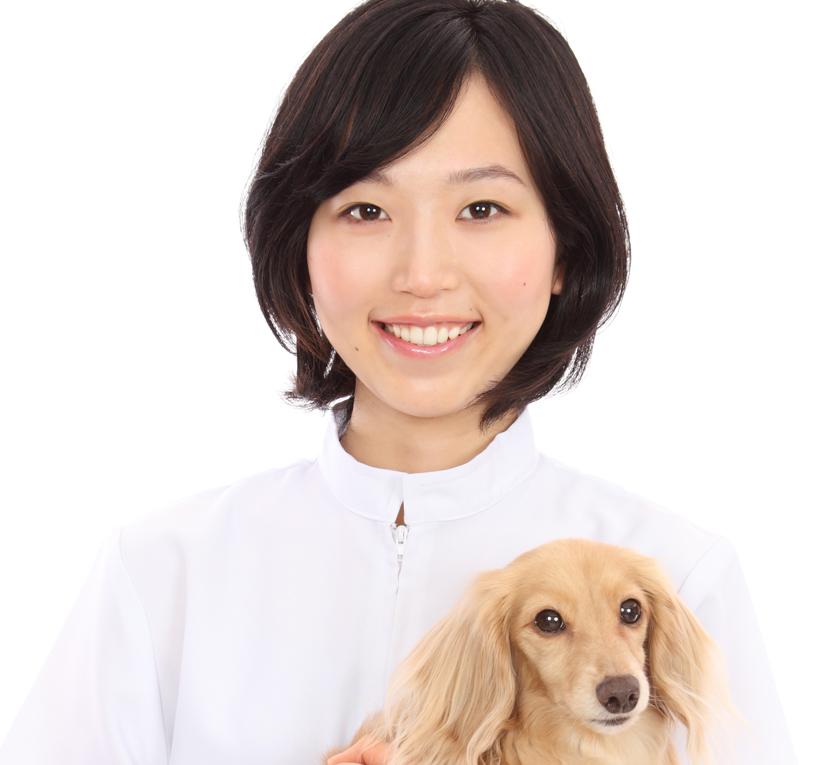 アプリで家にいながら獣医師に診断してもらえる。